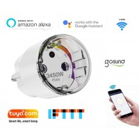 GoSund P111 Smart Life @ home 16A slimme wifi plug stekker